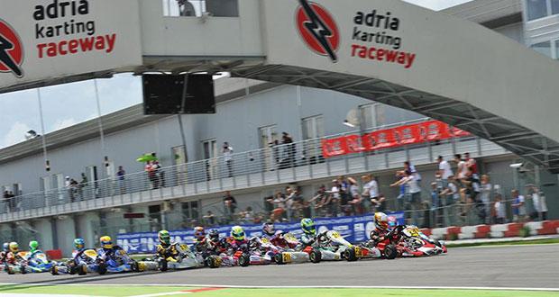 CIK-FIA European Championship OK – OKJ – KZ2 in Adria (RO) – Qualifying heats